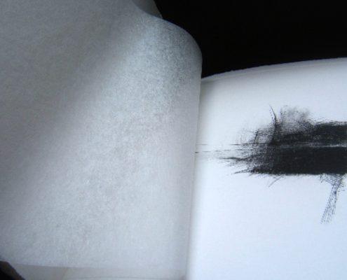 Nuées d'incertain - Hervé Aussant - Armelle Gapihan - 2007